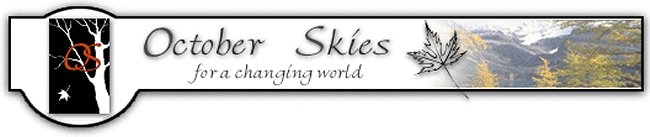 October Skies Custom Website Development