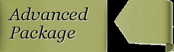 Brochure Information Style Website Costs
