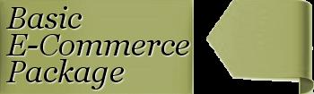 Basic E-Commerce Starter Website Costs