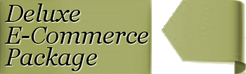 Premium E-Commerce Website Solutions Costs